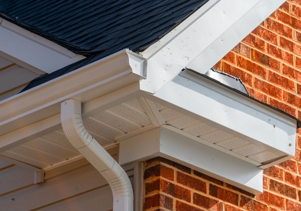 professional fascia soffit cleaning